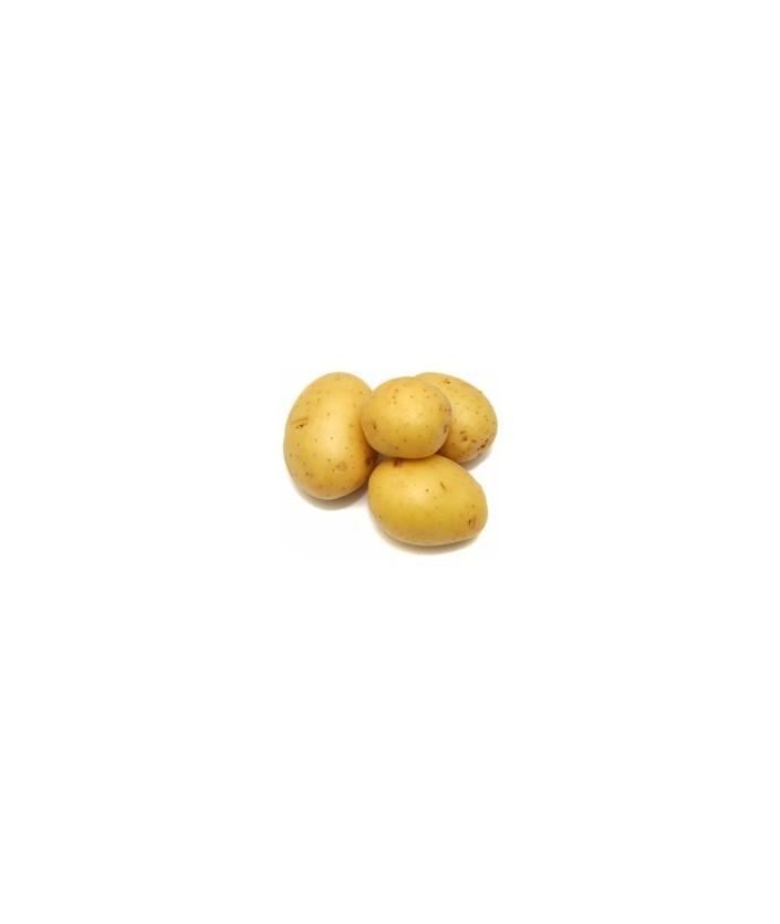 FD23 - 30 Kg. Patata Extra para Freír y Cocer
